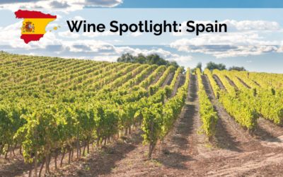 Wine Spotlight: Spain